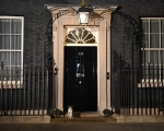 Le 10 Downing Street 1